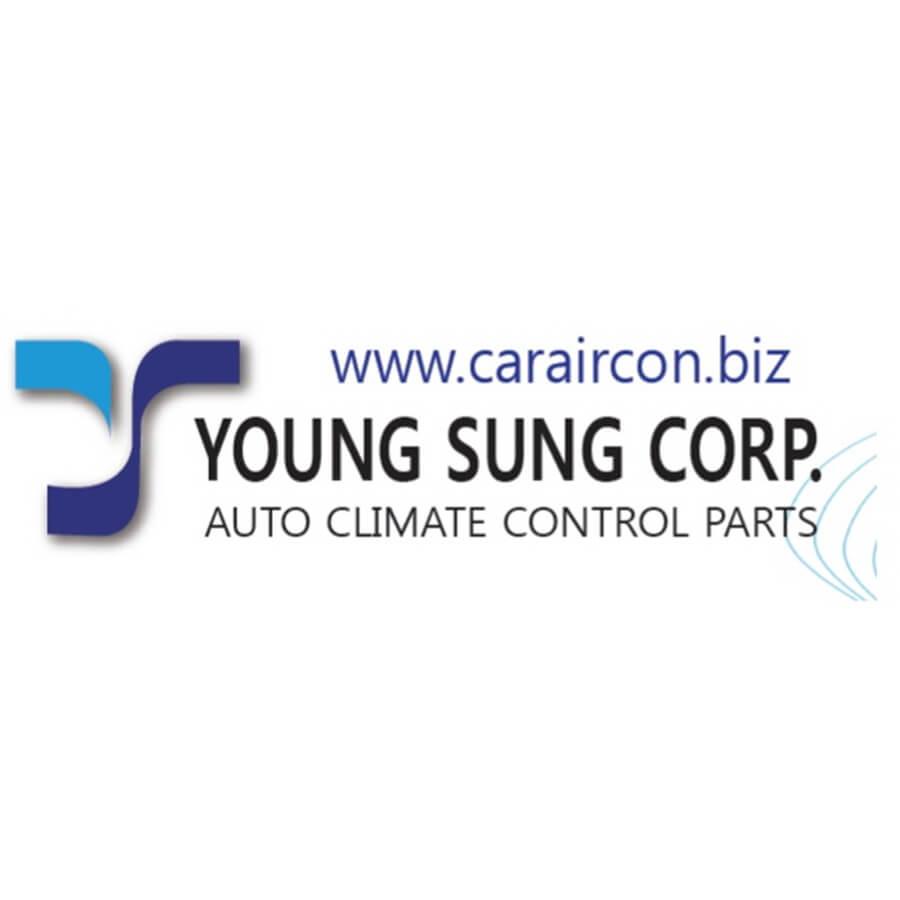 شركة يونج سانج